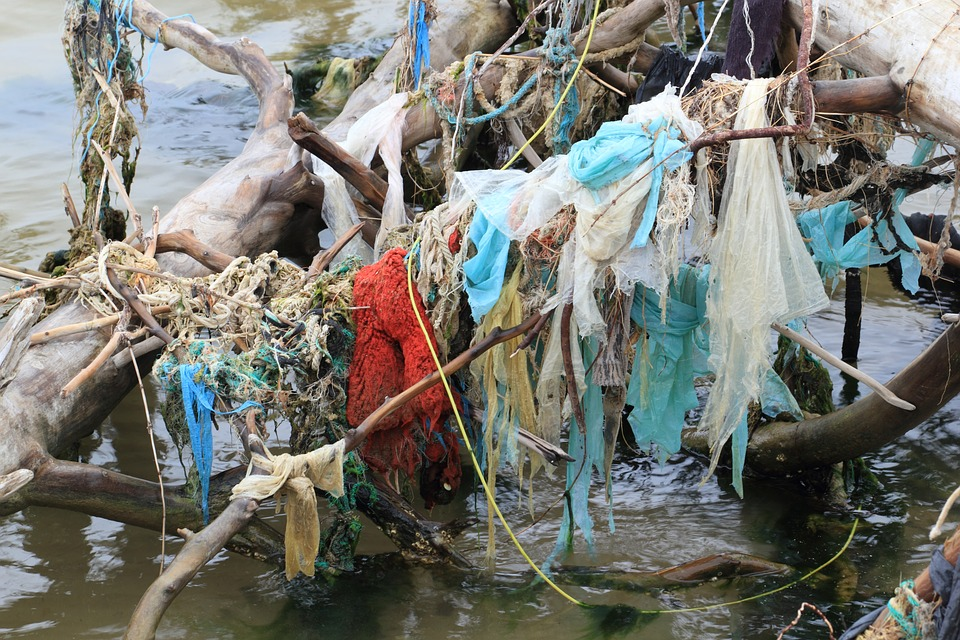 Filtration: Sistema Per Pulire Oceano Pacifico?